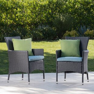 Charlton Home Faison Patio Dining Chair with Cushion (Set of 2)