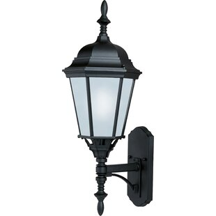Mathilda 1-Light Outdoor Sconce