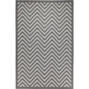 Trip Chevron Light Gray/Anthracite Indoor/Outdoor Area Rug