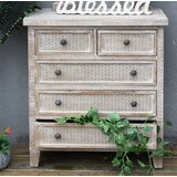 Dart Rectangular Accent Chest by Joss & Main