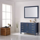 Ryland 48 Single Bathroom Vanity Set with Mirror by Everly Quinn