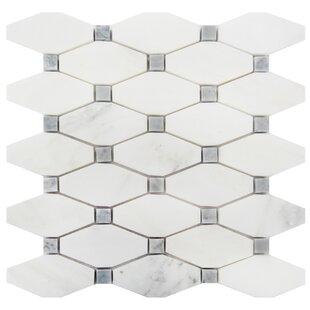 2 x 4 Marble Mosaic Tile in Oriental White/Gray