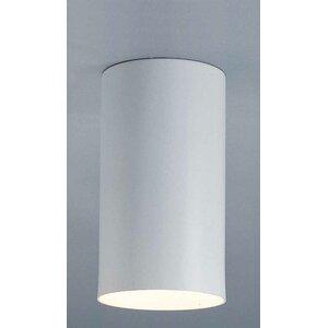 Cammi 1-Light Ceiling Fixture Flush Mount