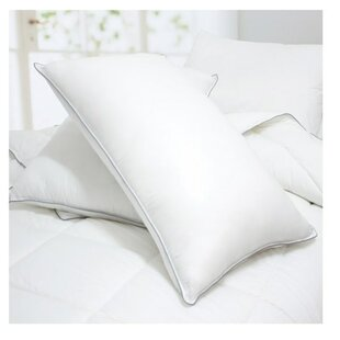 Beyonce Down Alternative Pillow (Set of 2)