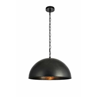 Nederland 1-Light Dome Inverted Pendant by Greyleigh