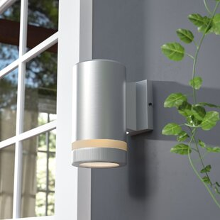 Leilla 1-Light LED Outdoor Sconce