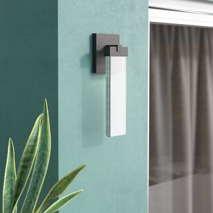 Wade Logan Camborne 1-Light Outdoor Sconce