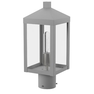 Demery 1-Light Lantern Head by..