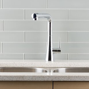 Hahn Pull Out Single Handle Kitchen Faucet