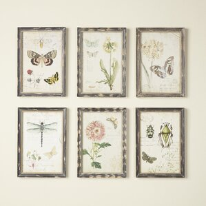 Multi Frame Wall Art framed art | wayfair