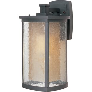 Loon Peak Bissonet 1-Light Outdoor Wall Lantern