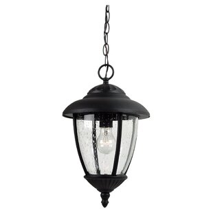 Compare prices Dowling 1-Light Outdoor Pendant By Alcott Hill