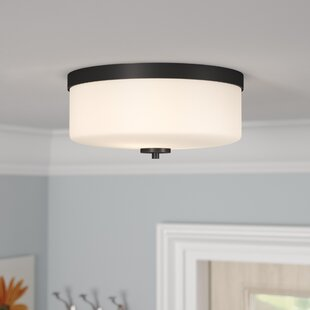 Andover Mills Sanderson 2-Light Flush Mount