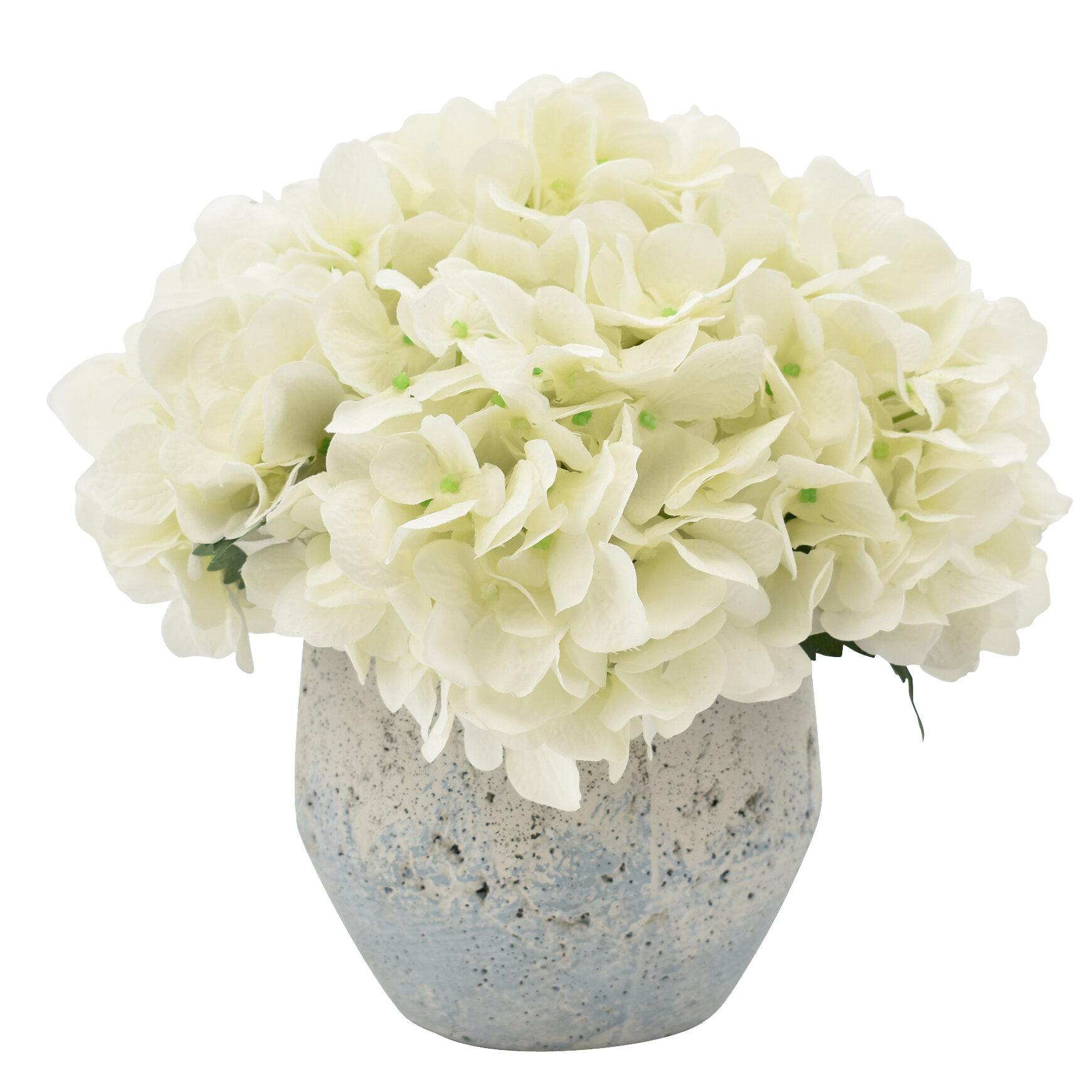 Rosecliff Heights Hydrangeas Floral Arrangement In Pot Reviews Wayfair