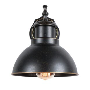 Gracie Oaks Remie Outdoor Barn Light