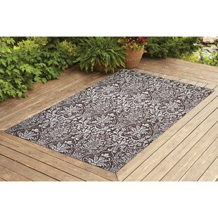 Krauss Dark Brown Indoor/Outdoor Area Rug