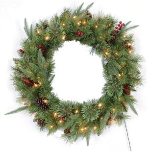 Outdoor wreath with lights wayfair lighted wreath aloadofball Image collections