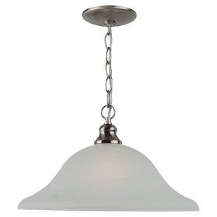 Efficient Lighting 1-Light Cone Pendant