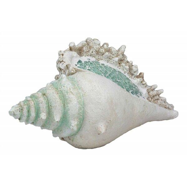 "Large Ocean Sea Golden Conch Shell Hermit Crab Statue 6.75/""L Jumbo Seashell"