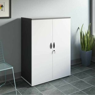 Bourassa 2 Door Storage Cabinet