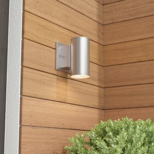Latitude Run Cayuta 1-Light Outdoor Sconce