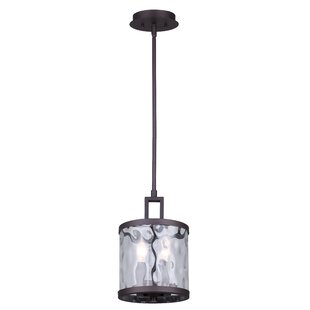 Williston Forge Bernardine 2-Light Pendant