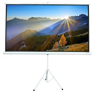 Pull up White 84 Portable Projection Screen