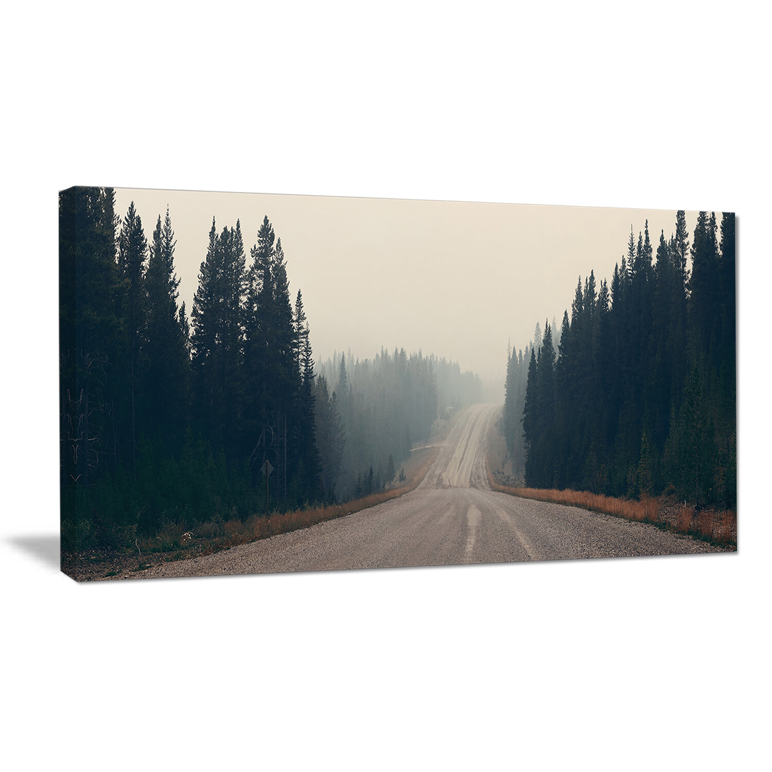 Designart Foggy Road In Forest In Banff Park Photographic Print On Wrapped Canvas Wayfair