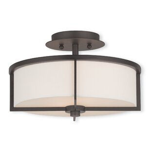 Rainer 2-Light Semi-Flush Mount by Brayden Studio