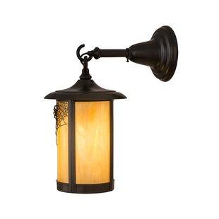 Loon Peak Yarber 1-Light Outdoor Wall Lantern