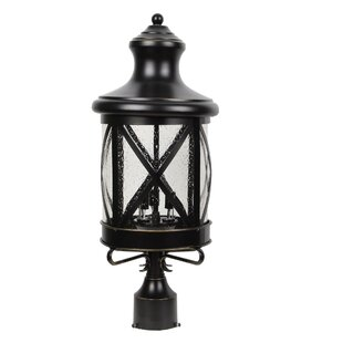 Gracie Oaks Lidia 3-Light Lantern Head