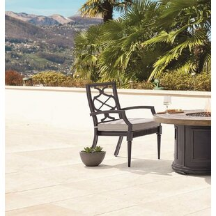 Canora Grey Euston Patio Dining Chair with Cushion (Set of 2)