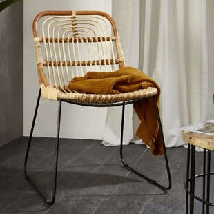 Temescal Tiger Garden Chair By Bay Isle Home