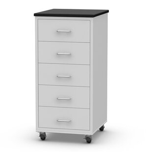 5 Drawer Rolling Modular Accent Chest  by SteelSentry