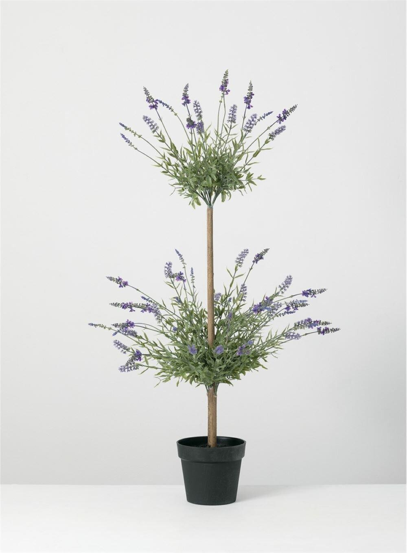 Gracie Oaks Lavender Topiary In Planter Wayfair