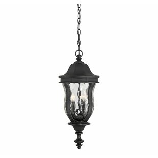 Coutu 3-Light Outdoor Hanging Lantern