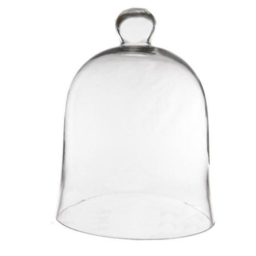 cc64ac8558f17 Latitude Run Slye Glass Cloche Bell Jar & Reviews | Wayfair