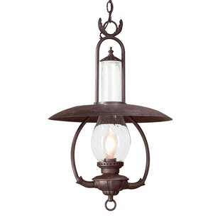 Welch 1-Light Outdoor Hanging Lantern by Astoria Grand