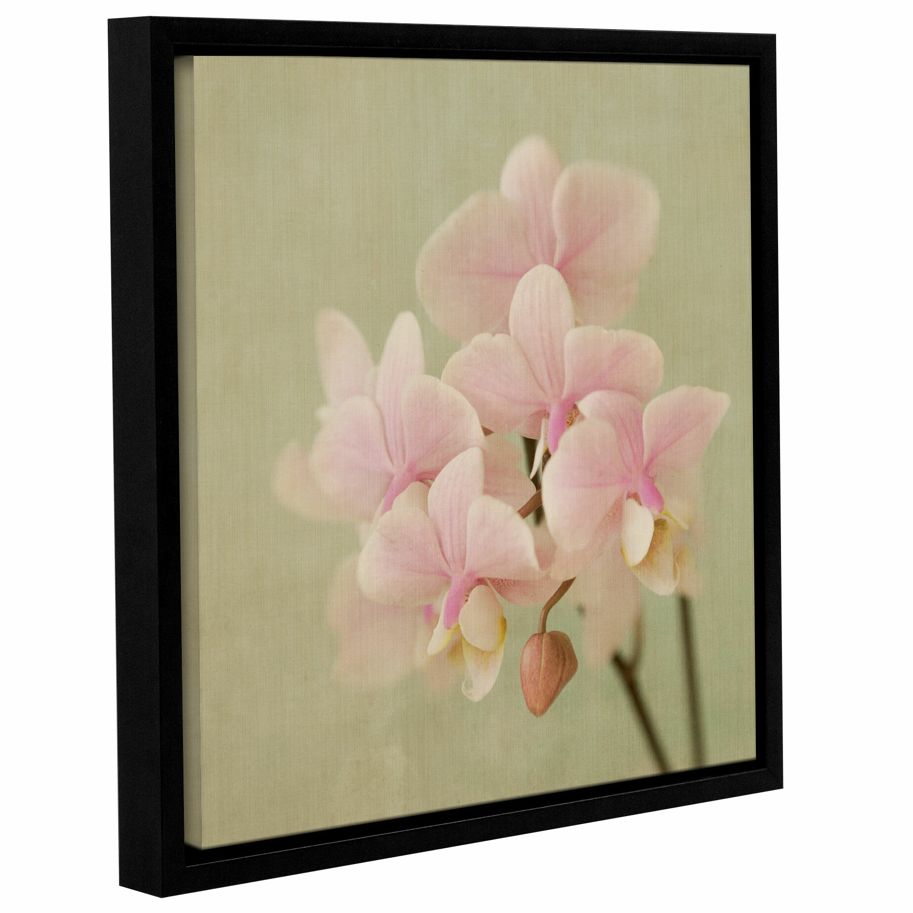 Ophelia Co Soft Orchid Framed Graphic Art Wayfair