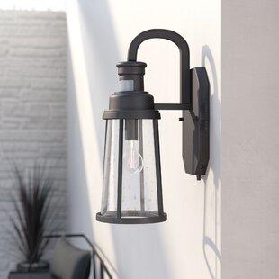 Hiliritas 1-Light Metal Outdoor Wall Lantern By Trent Austin Design