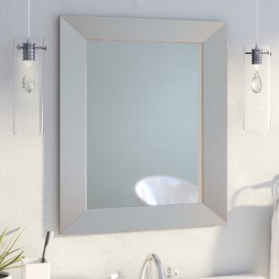 Kurt Bathroom/Vanity Mirror By Langley Street