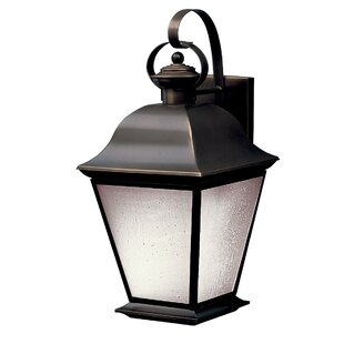 Darby Home Co Mulgrave 1-Light Outdoor Wall Lantern