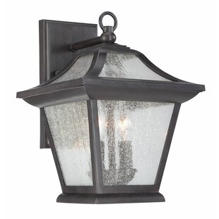 Vanleer 2-Light Outdoor Wall Lantern By Winston Porter Outdoor Lighting