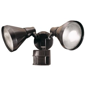 Schaefer 2-Light Flood Light