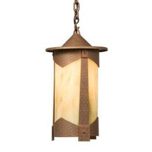 Steel Partners Pasadena 1-Light Outdoor Hanging Lantern
