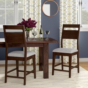 Farrington Gurney Transitional Dining Chair (Set of 2) Brayden Studio