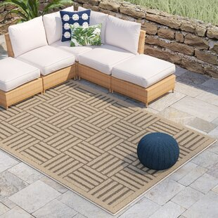 Zaniyah Gray Indoor/Outdoor Area Rug