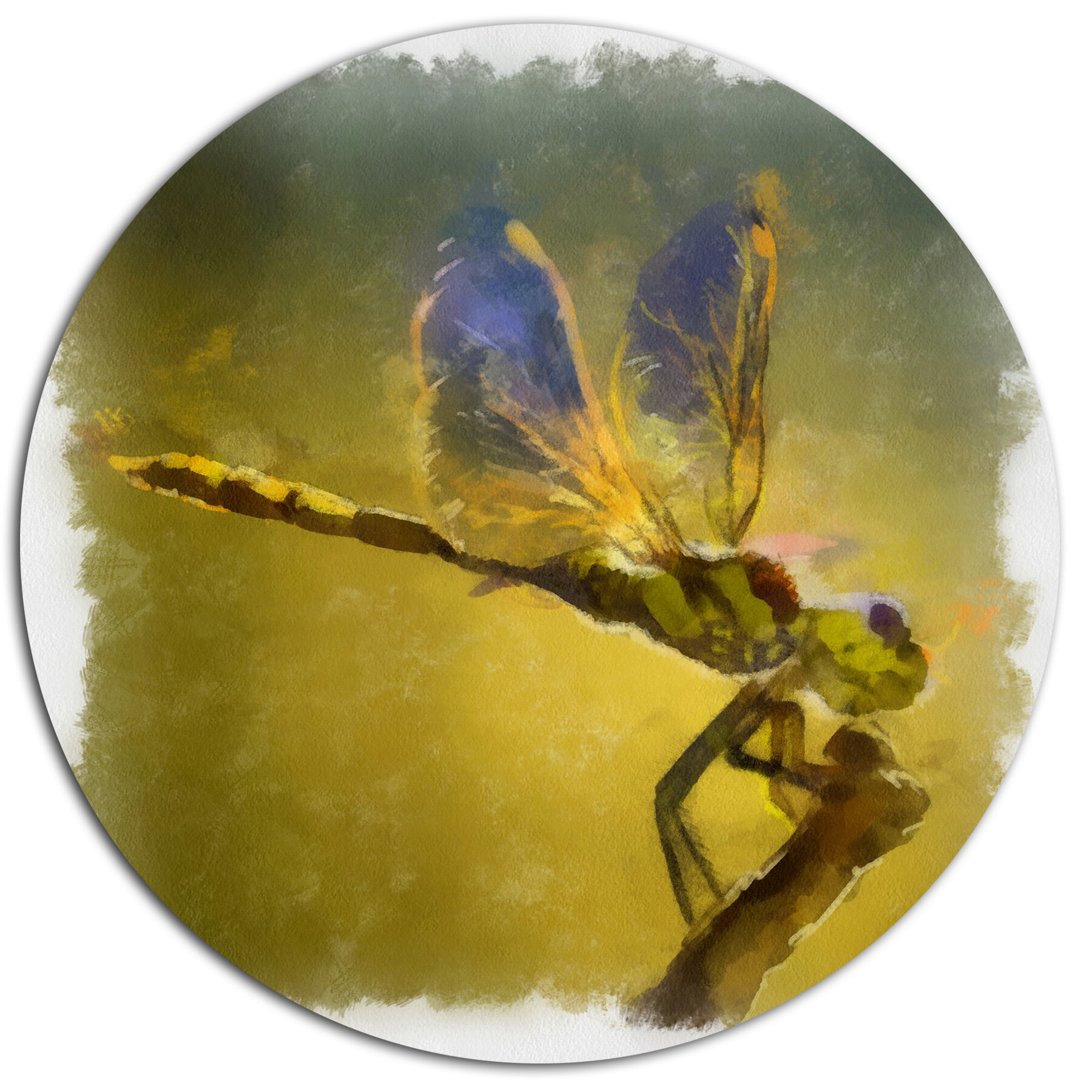 DesignArt \'Dragon Fly Watercolor Illustration\' Oil Painting Print on ...