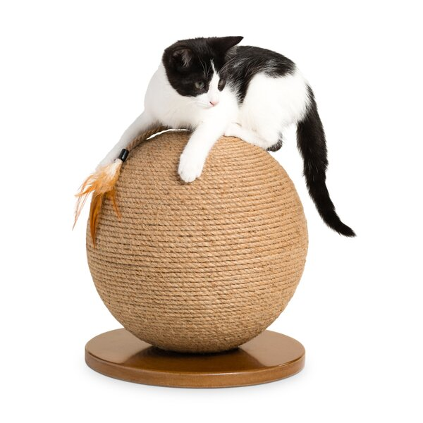 Extended Black Friday Sale On Cat Scratchers Scratching Posts Wayfair