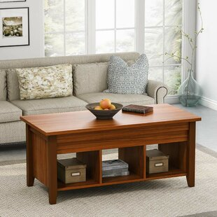Minner Lift Top Coffee Table with Storage